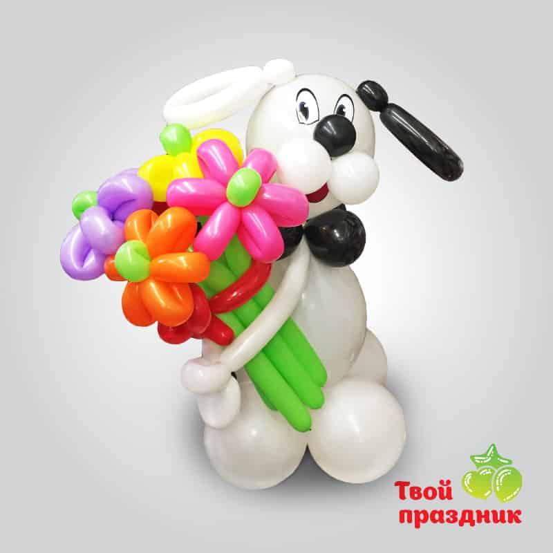 Собачка - фигурка из шаров. Твой праздник, Калининград