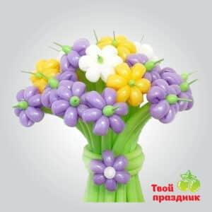 Цветы ромашки из шариков в Калининграде